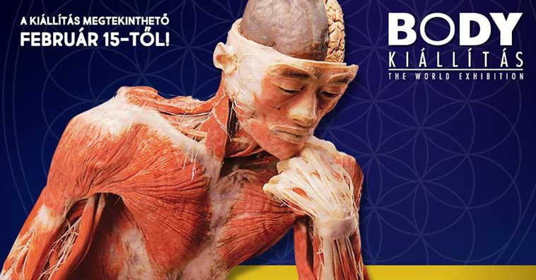 Body - the World Exhibition 2018, Budapest, Hungary